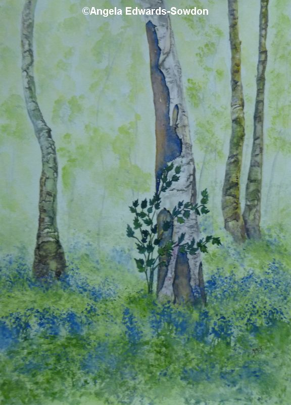Blue Bells on river Wye.  Art Class